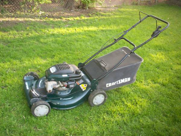 How to choose a lawn mower