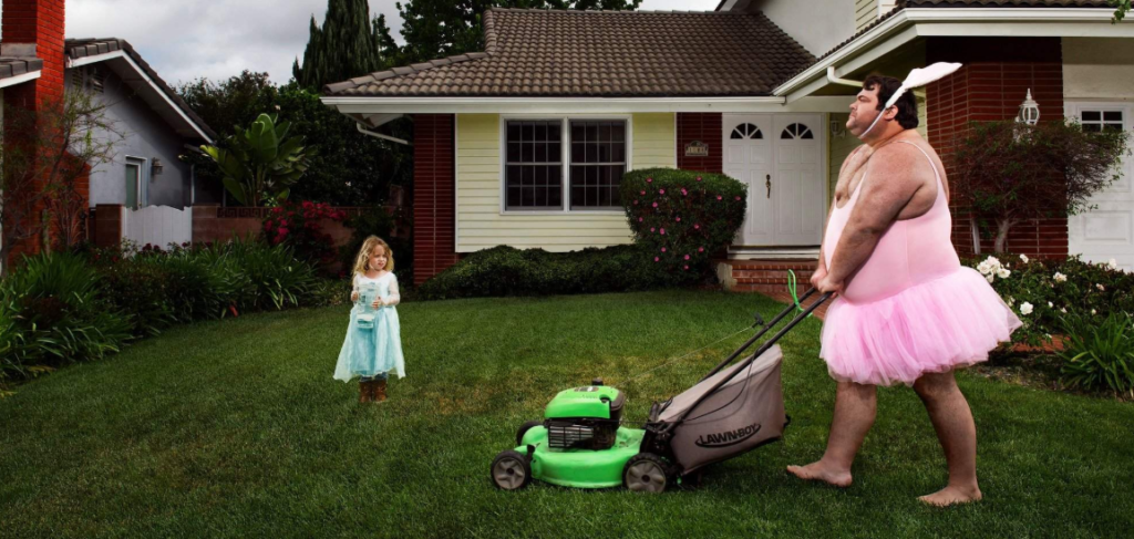 Lawn mower maintenance: correct use of garden equipment